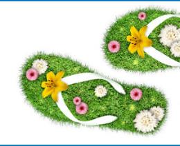 Logo-Sujet_FUMO_Frauen_bewegen-mit Rand