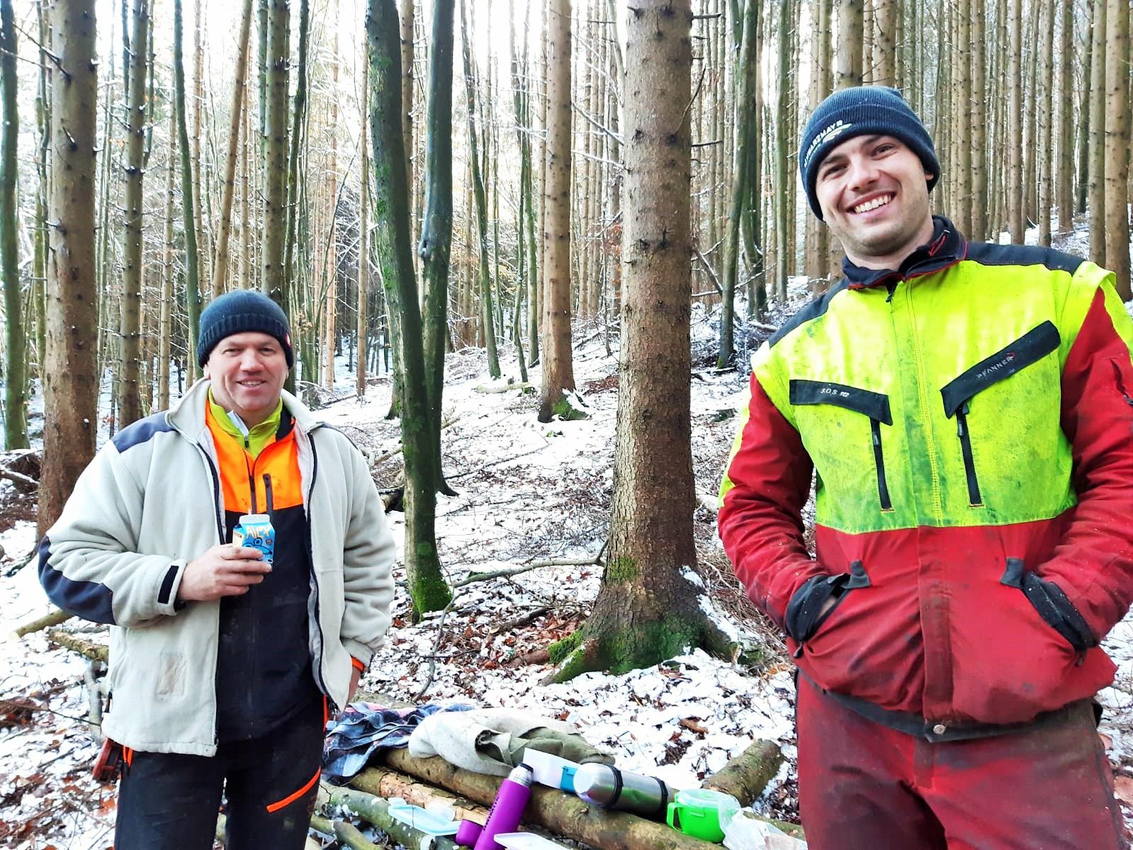 Waldpflegetraining