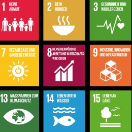 SDGs-DE_4887x2392px_klein